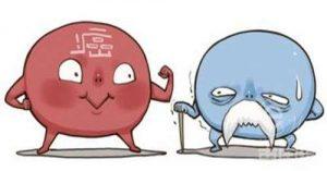 克唑替尼后的第二代ALK肺癌靶向药艾乐替尼中文说明书